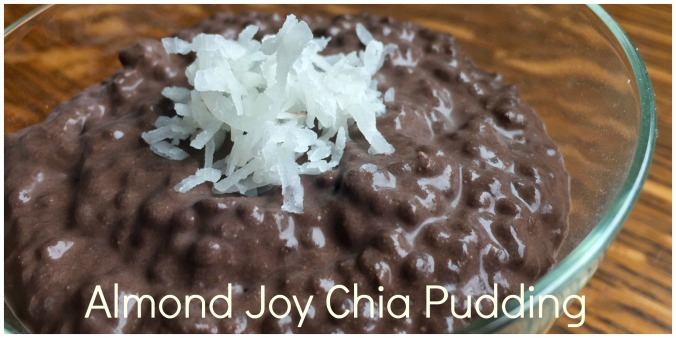 almond joy chia pudding header