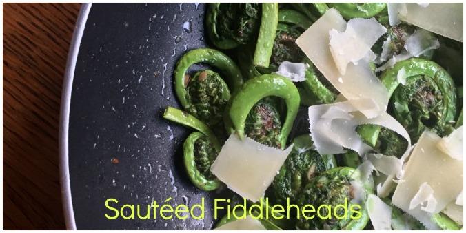 fiddleheads header